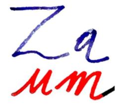 Gruppo-Zaum